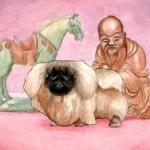 Пекинес история породы
