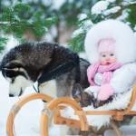 Почему детям важно общение с животными